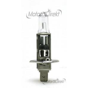 SCT H1 Basic 12V 55W P14,5s